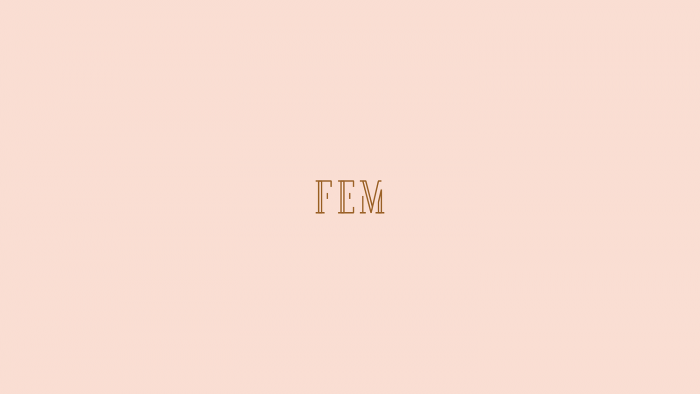 FEM Logo Design by upstruct