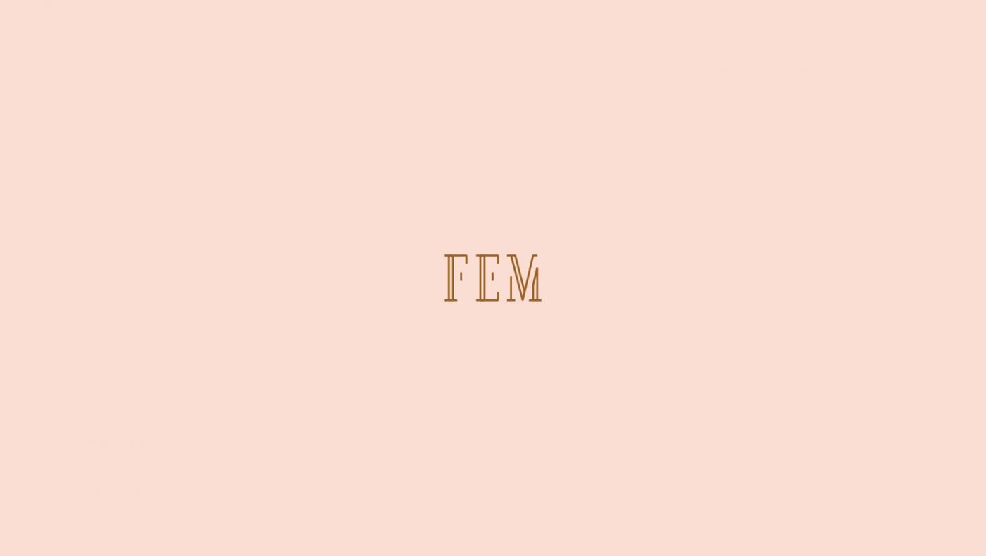 FEM Logo Design by upstruct